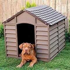 Las Mejores Casetas para Perros