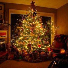 comprar árboles de Navidad