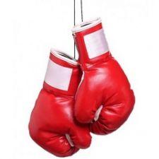 Tienda Online de Guantes de Boxeo